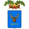Veterinari della provincia di Brindisi per Tartarughe e Rettili
