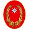 Veterinari della provincia di Campobasso per Tartarughe e Rettili