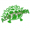 "ADOTTARTA – Troviamogli un nuovo ""habitat"""