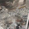 Morte tra le fiamme quattro tartarughe esotiche