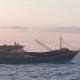 Filippine sequestra peschereccio cinese carico di tartarughe protette