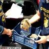 Tartarughe abbandonate in un cassonetto a Trani