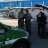 Al porto di Bari sequestrate tartarughe e volatili nascosti tra i bagagli