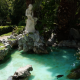 Anche ad Atene l'abbandono delle tartarughe nelle fontane