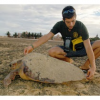 Volontario pagato per lavorare con le tartarughe a Capo Verde
