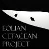 Campi di ricerca e corsi estivi organizzati alle isole Eolie