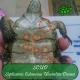 SCUD – Setticemia cutanee delle tartarughe