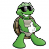 La tua tartaruga protagonista: inviaci le foto per il Calendario e l'Agenda Tartapedia 2016