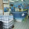 Il Centro Recupero Tartarughe Marine di Molfetta sarà trasferito a Bisceglie