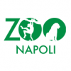 Zoo di Napoli: weekend alla scoperta dell'origine dei rettili