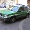 Denunciato negoziante di Bergamo per detenzione illegale di T. horsfieldii