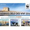 Apertura di un nuovo Centro Recupero Tartarughe Marine in Puglia