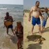 Tartaruga prelevata dal mare per fare foto e selfie
