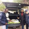 Tartaruga marina salvata da immigrati nigeriani ad Ostuni