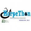HerpeThon 2017: la maratona per preservare rettili ed anfibi