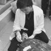 E' morta la tartaruga marina che aveva ingerito 915 monete
