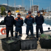 Tartaruga marina recuperata al largo di Pesaro