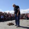 """Centinaia di partecipanti alla """"Pasquetta con le tartarughe"""""""