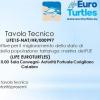 Tavolo tecnico per salvare le tartarughe marine a Corigliano