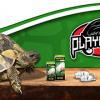 Arriva la promo per comprare cibo e accessori per tartarughe