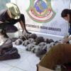 """Perù: salvate 27 tartarughe """"niger"""" destinate al mercato nero"""