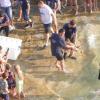 Maxi liberazione di tartarughe marine a Pola (HR)
