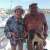 Livorno: coppia pesca una tartaruga marina per sbaglio