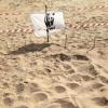 Secondo nido di tartaruga marina a Lido Fiori – Menfi (AG)