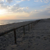 "Spiaggia ""tartaruga friendly"" ripulita a Castel Volturno"