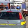 Sequestrate sei tartarughe terrestri al porto di Savona