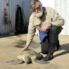 Un amore per le tartarughe marine lungo 50 anni