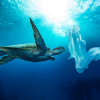 Sacchetti biodegradabili a pagamento? Che ben vengano!