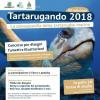 Tartarugando: il concorso per bambini dedicato alle tartarughe