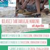 Fondazione Cetacea: ripartono le liberazioni delle tartarughe