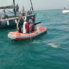 Nel giorno della Liberazione tornano in mare tre tartarughe