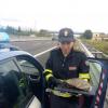 La Polstrada recupera una tartaruga ferita a bordo autostrada