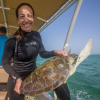 Golfo Arabico: prosegue il progetto di tutela delle tartarughe