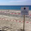 Ancora una deposizione di tartaruga marina in Calabria