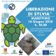 Giornata Mondiale delle Tartarughe Marine: due eventi in Sicilia