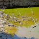 Vasto: recuperate le tartarughe dalla melma del laghetto