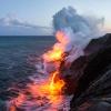 Quante tartarughe son morte a causa dell'eruzione del Kilauea?
