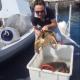 Diportisti salvano due tartarughe marine allamate ad una coffa