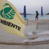 Nascono 60 tartarughine su una spiaggia di Lampedusa