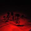 """Schiude il nido di """"Caretta caretta"""" sulla spiaggia di Avola (SR)"""