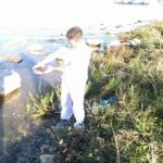 Tartarughe d'acqua dolce abbandonate in mare a Molfetta (BA)