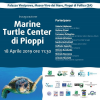 [RINVIATO] Inaugura il Centro per Tartarughe Marine del Cilento