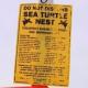 """Donna arrestata per aver """"disturbato"""" un nido di tartaruga marina"""
