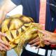 Tartarughe preziose e coccodrilli: bloccato carico dalla Malesia