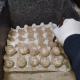 Traslocato il nido di tartaruga marina rinvenuto nel tarantino