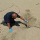 Terzo nido di tartaruga rinvenuto sulla spiaggia di Ascea Marina (SA)